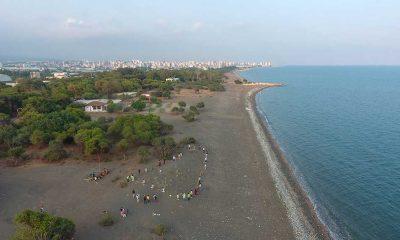 Mersin'de kum zambaklarının bulunduğu alan koruma için şeritle çevrildi