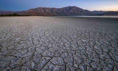 İklim değişikliğini kişisel tehdit olarak algılayanlar artıyor