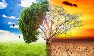 İklim sözlüğü: Krizi ve çözüm önerilerini anlamak için bilmeniz gereken 15 kavram