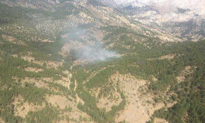 Isparta'da çıkan orman yangınına havadan ve karadan müdahale ediliyor