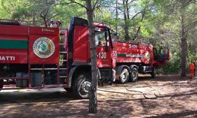 Manavgat'ta çıkan orman yangınları söndürüldü