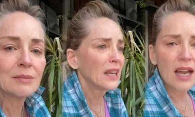 Gözyaşları içinde dua istemişti... Sharon Stone'un 11 aylık yeğeni yaşamını yitirdi