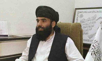 Taliban, sözcülerinden Suheyl Şahin'i BM daimi temsilcisi adayı gösterdi