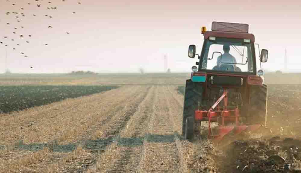 Tarımda üretici enflasyonu yıllık yüzde 24 arttı
