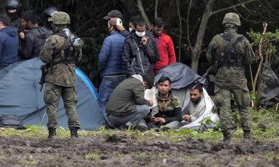 BM: Polonya ve Belarus sınırı yakınlarında 4 göçmenin donarak ölmesi şok edici