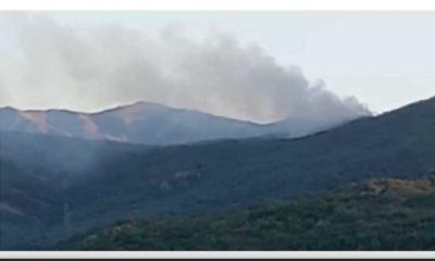 Tunceli'de orman yangını sürüyor, 34 STK yangın bölgesine gidiyor