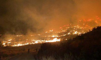Dalaman'da orman yangını