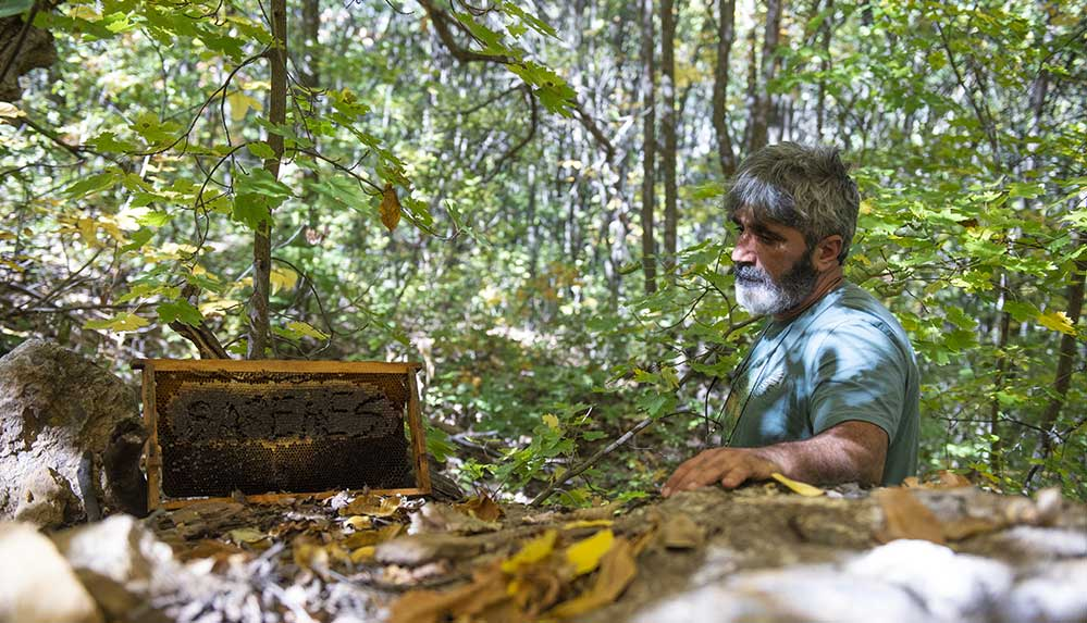 """Doğa tutkunu arıcı 5 yıldır """"ayıların bal hakkını"""" doğaya bırakıyor"""