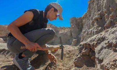 Kaymakam tarihin gün yüzüne çıkarılması için kazılarda gönüllü çalışıyor