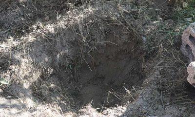 Kayseri'de ölen köpeğin gömüldüğü çukur cinayet şüphesiyle açıldı
